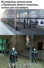 На перронах автовокзалов в Тюменской области появились клетки для пассажиров   | Гп1
