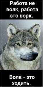 Работа не волк, работа это вор к. Волк - это ходить.